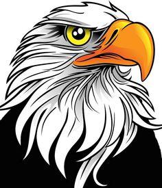 Clipart Hawk