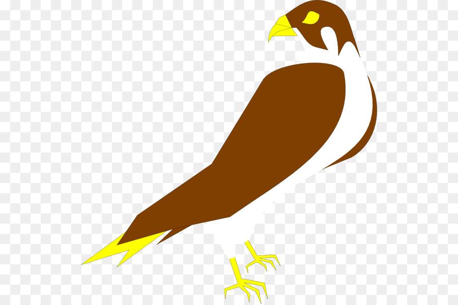 900x600 Peregrine Falcon Clip Art