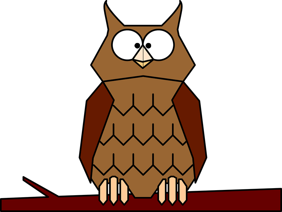 954x720 Brown Hawk Owl Clipart Animated