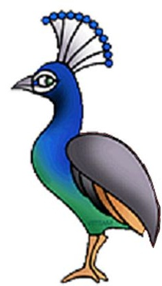 236x415 Peacock Clipart Head