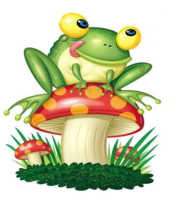 553x634 Pin By Felicia Steele On Felicia's Frogs Amp Toads