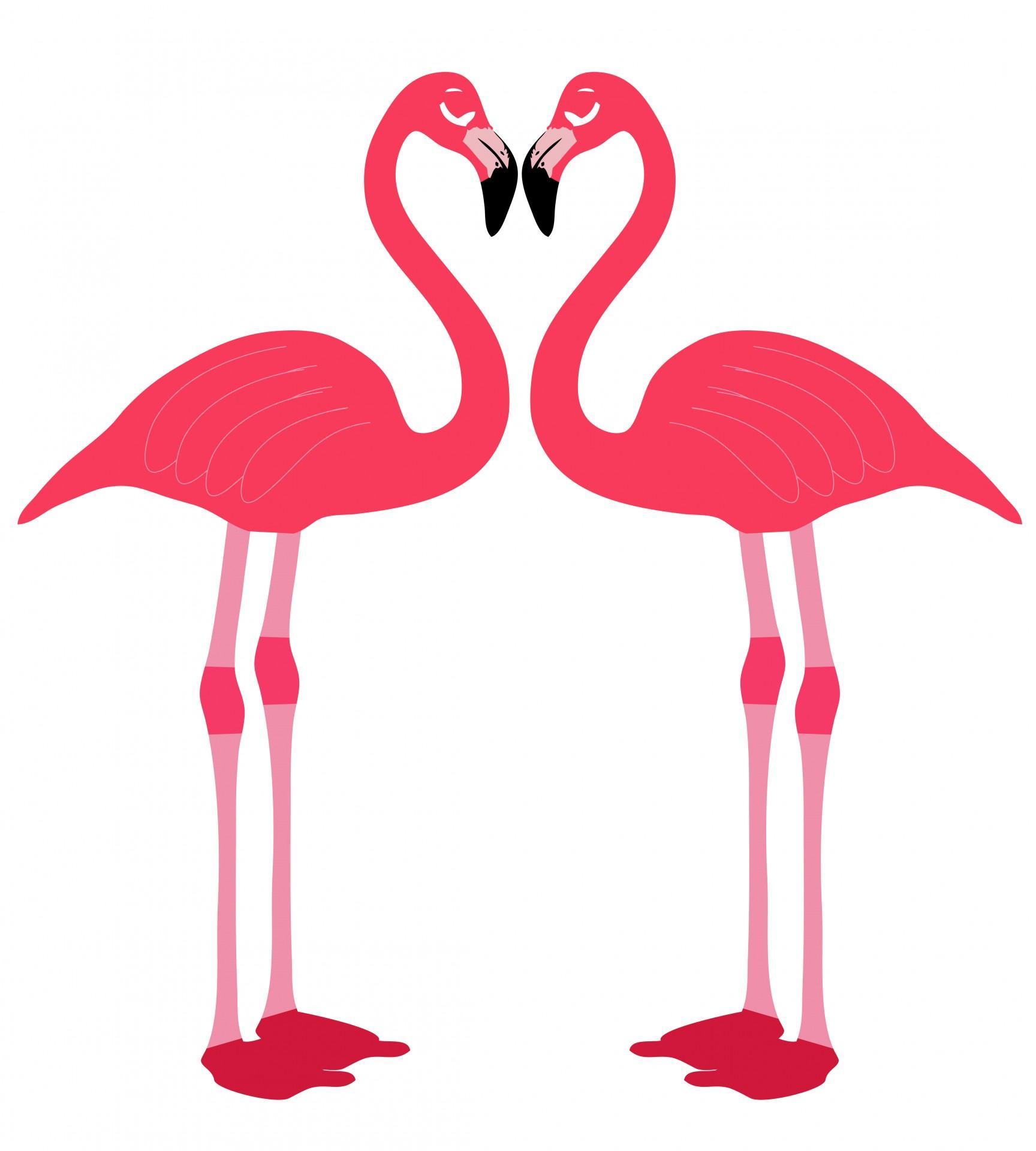 1728x1920 Love Birds Clipart