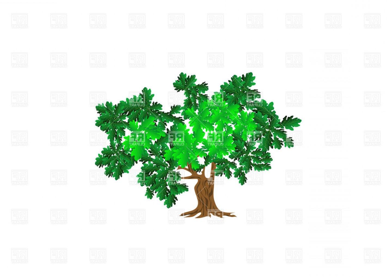 1440x1018 Green Oak Tree Vector Clipart Createmepink