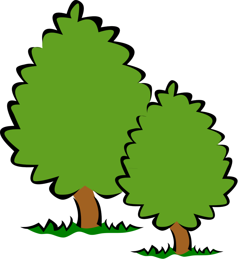 Clipart Oak Tree At Getdrawings Com Free For Personal Use Clipart