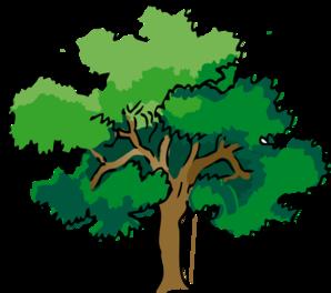 298x264 Oak Tree Clip Art