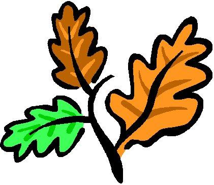 421x364 Oak Tree Oak Leaves Clip Art Clipart Bay