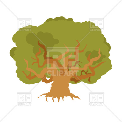 400x400 Oak. Large Old Tree. Royalty Free Vector Clip Art Image