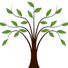 225x225 Tree Of Life Clipart Sweeping Oak Tree Design