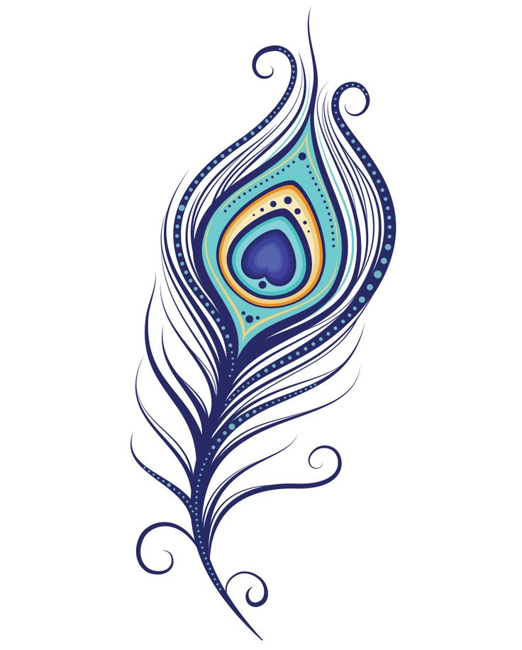 736x917 Peacock Clipart Feather Down