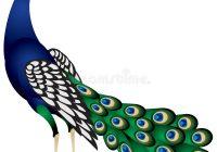 200x140 Peacock Clipart Peacock Clip Art