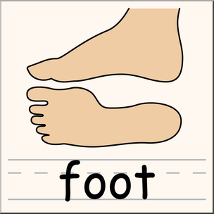 304x304 Clip Art Parts Of The Body Foot Color I Abcteach