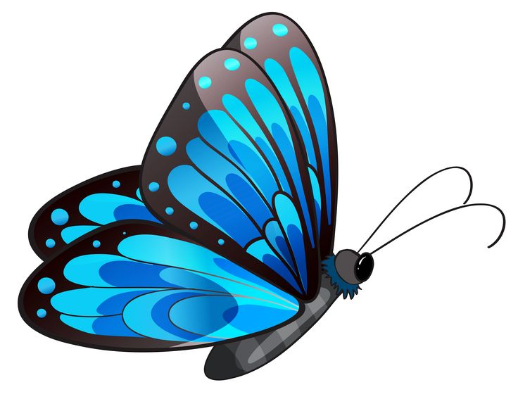 Clipart Of Flowers And Butterflies