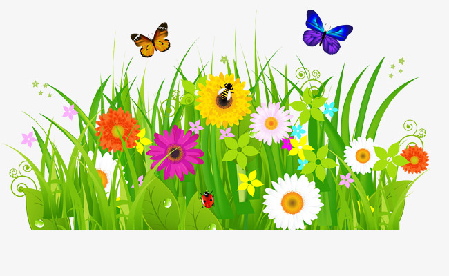 650x400 Bushes, Flowers, Butterflies, Flower, Butterfly, Weed Png Image