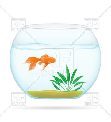 362x400 Goldfish In Transparent Aquarium Royalty Free Vector Clip Art