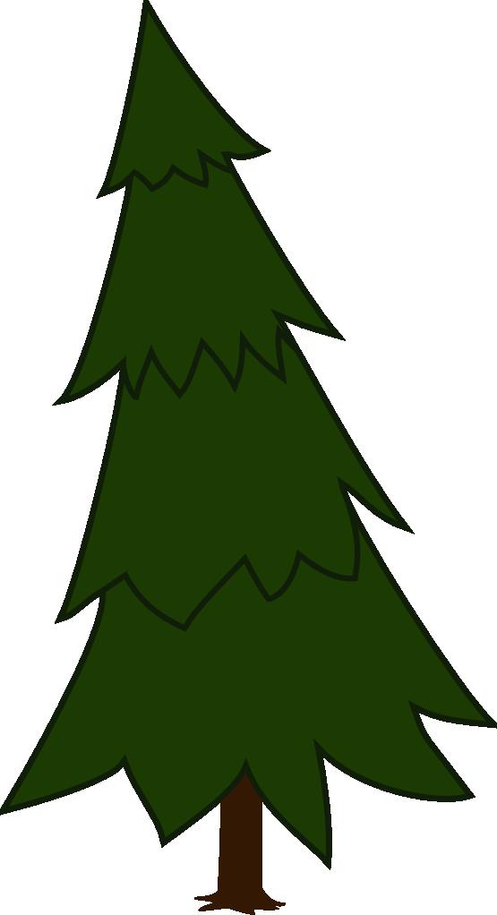 555x1022 Pine Tree Spruce Clip Art