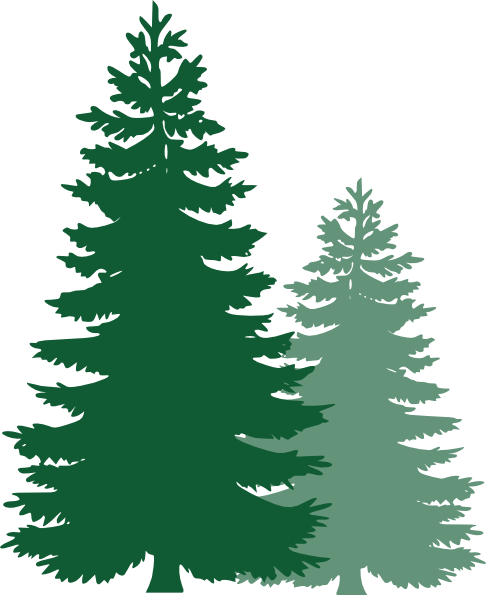 486x595 Pine Trees Clip Art Clipart Panda