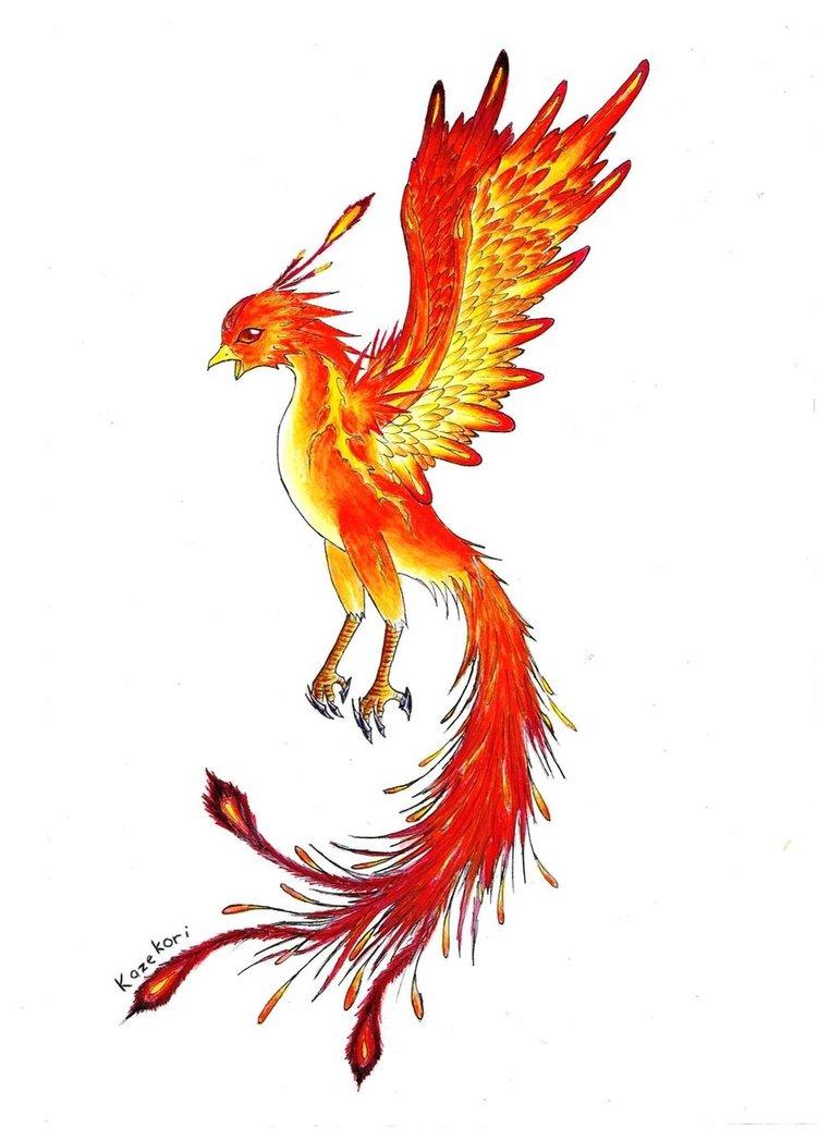 762x1048 Clip Art Phoenix Clip Art