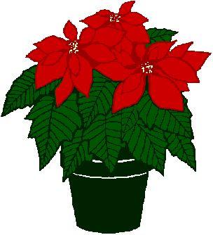 Clipart Poinsettia Flower