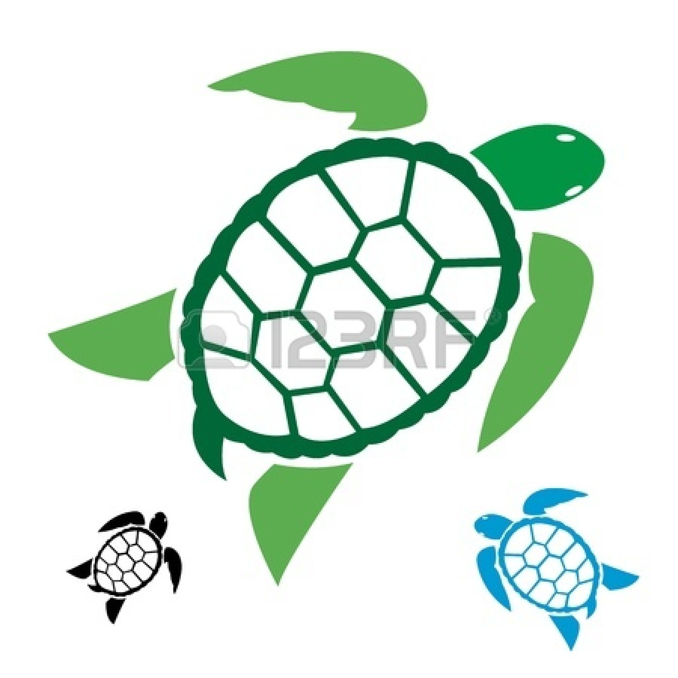 1350x1350 Sea Turtle Clipart