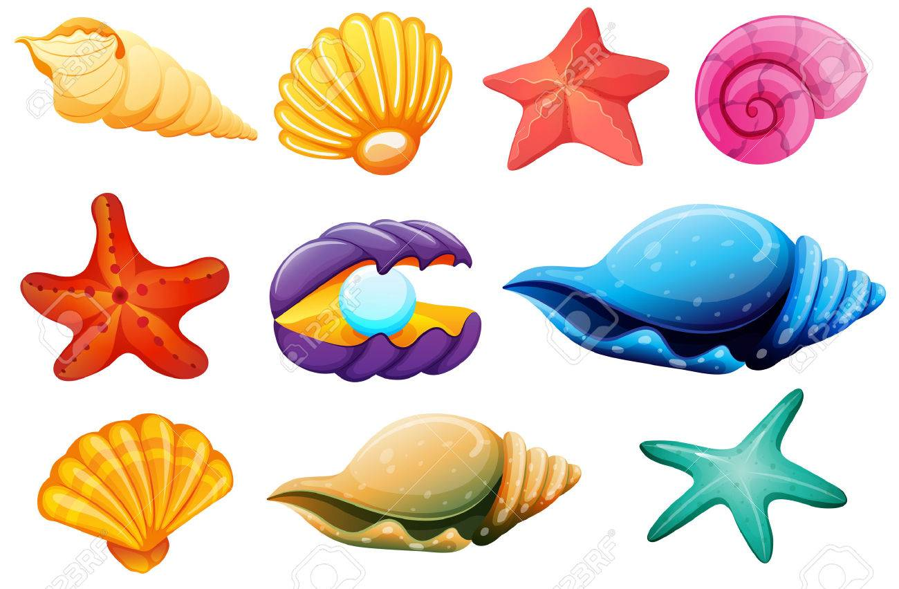 Clipart Sea Shells