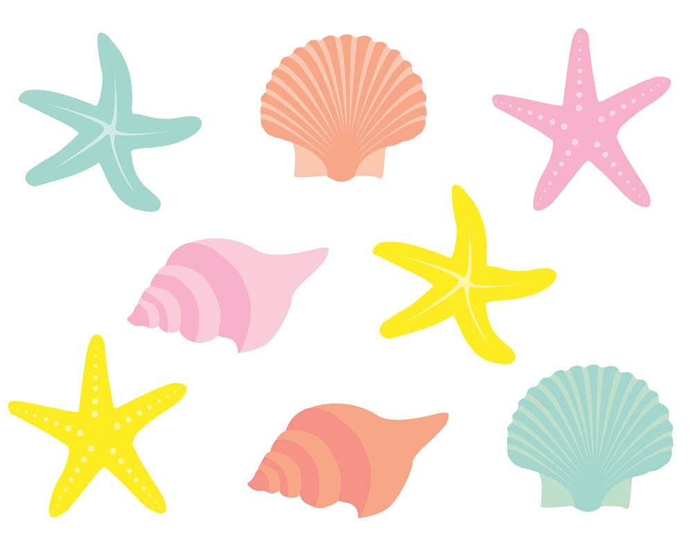 1000x800 Awesome Seashells Clipart Collection