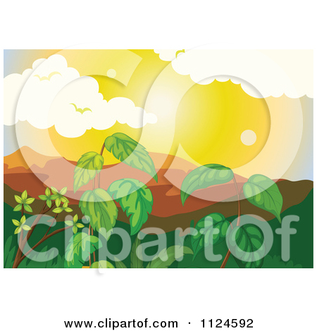 450x470 Jungle Foliage Clipart