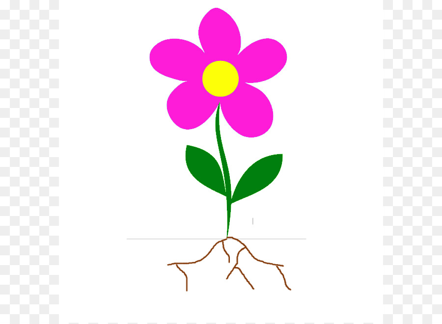 900x660 Flower Root Plant Stem Clip Art