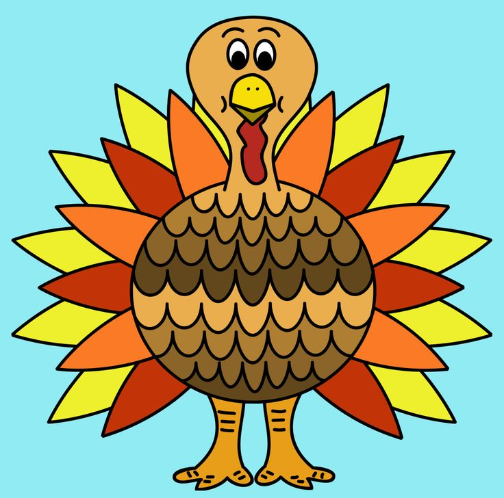 736x728 Informative Color Of A Turkey Clip Free Download Art On Clipart