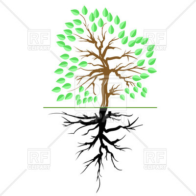 400x400 Green Tree With Root Royalty Free Vector Clip Art Image