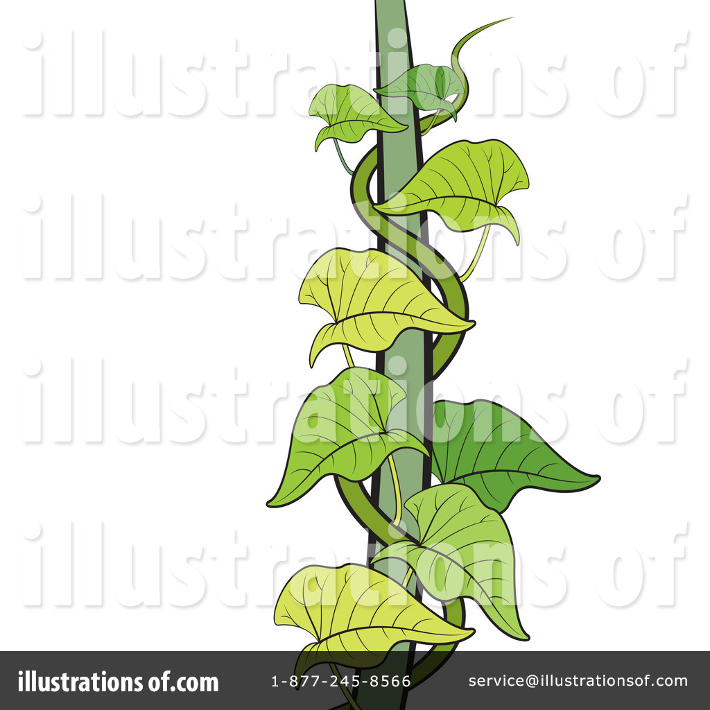 clipart vines at getdrawings com free for personal use clipart rh getdrawings com clip art vineyards clip art vineyards