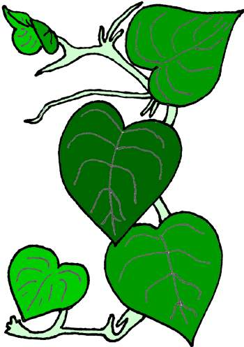 clipart vines at getdrawings com free for personal use clipart rh getdrawings com clip art videos clip art vines and leaves