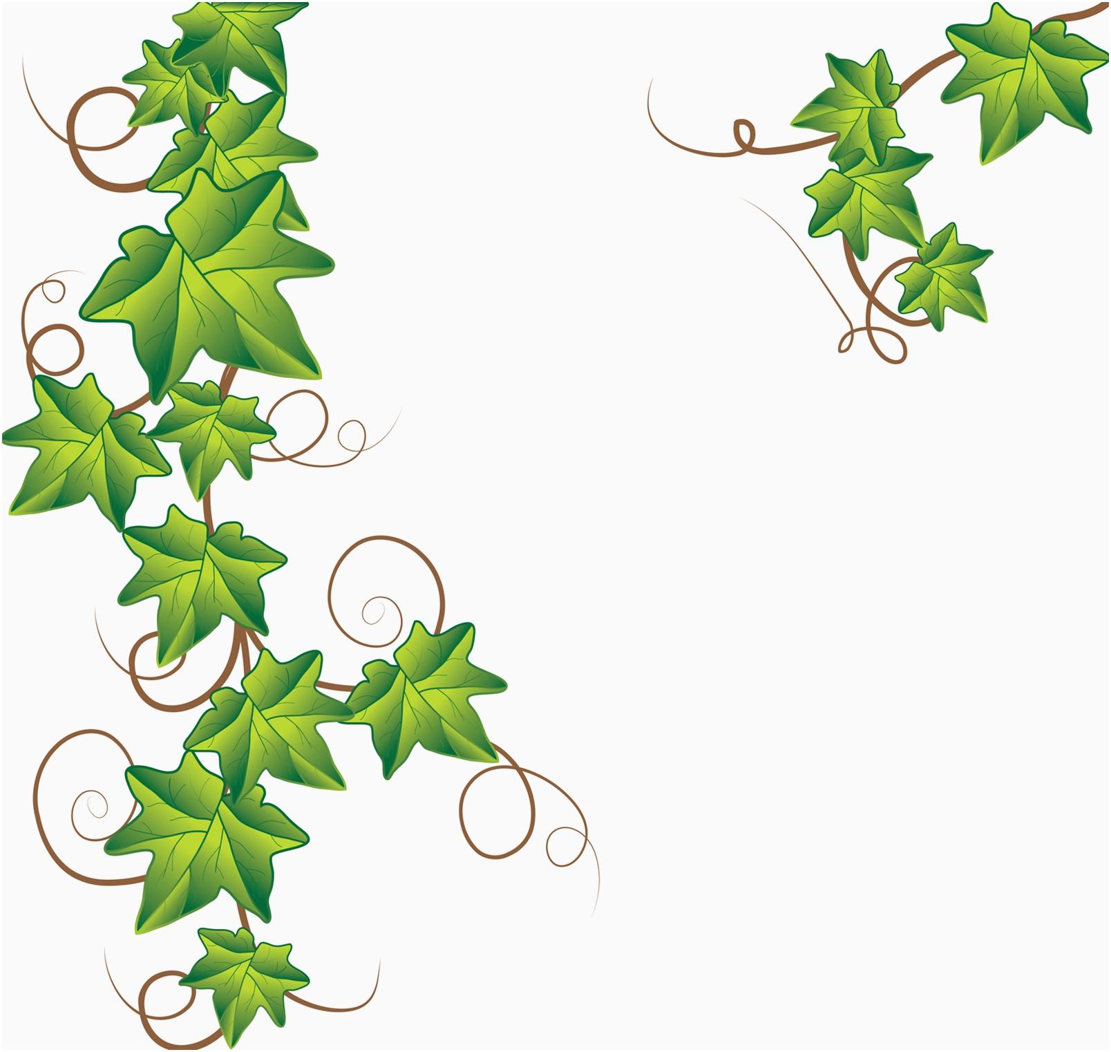 1608x1522 Free Vine Clipart Fresh Free Ivy Vine Clipart 26