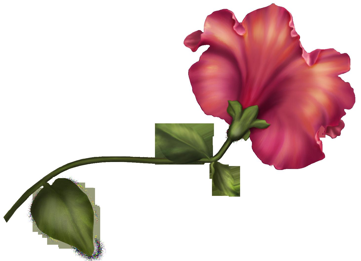 1463x1058 Vintage Flower Png Clip Art