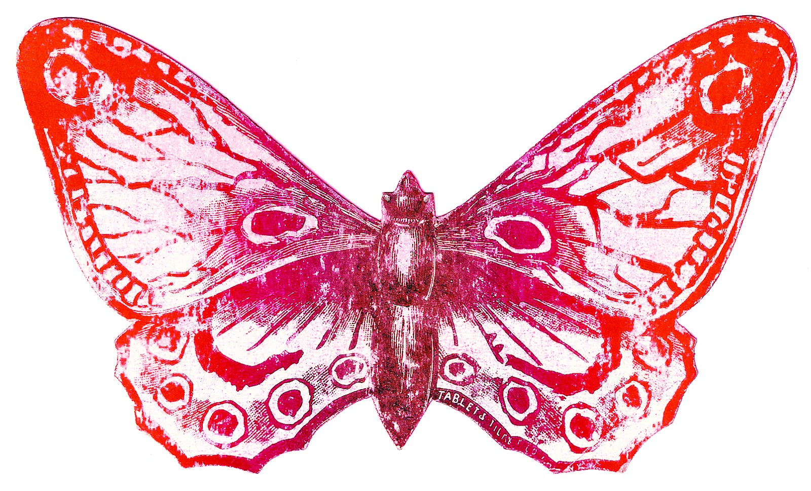 1600x969 Vintage Clipart Butterfly