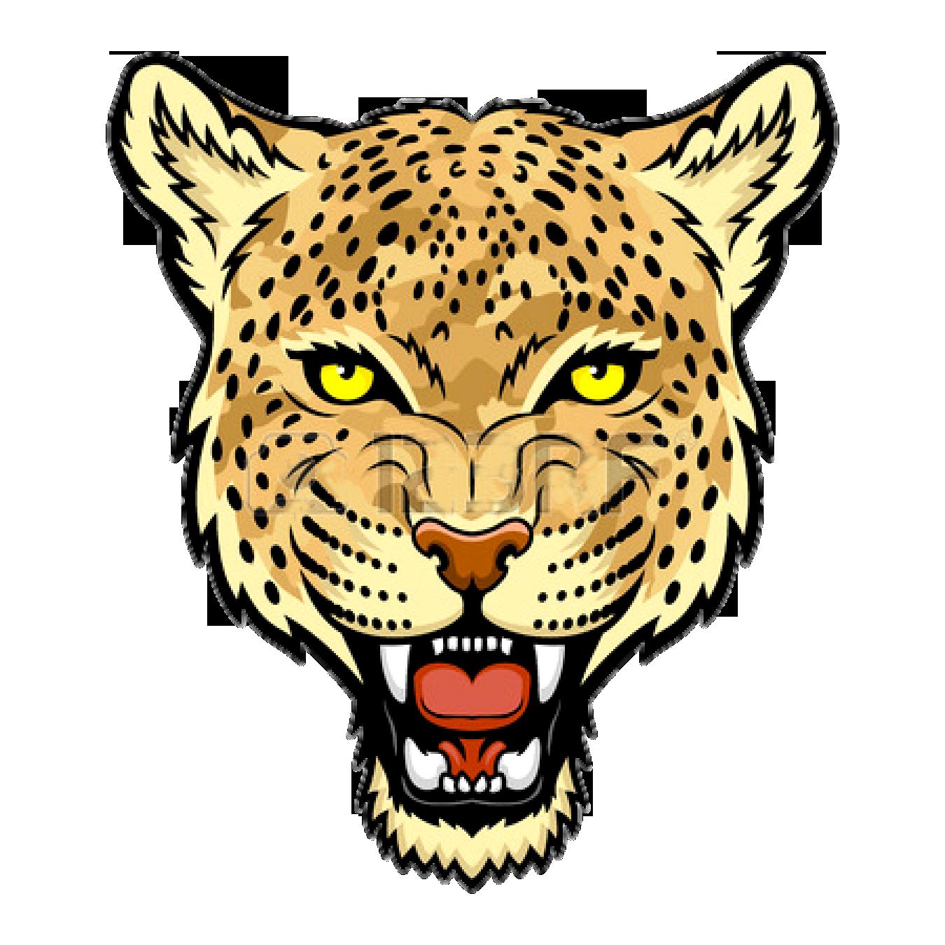 1350x1350 Amur Leopard Jaguar Felidae Snow Leopard Clip Art