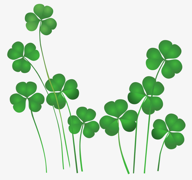 650x609 Green Clover, Clover, Png Picture, Lucky Grass Png Image