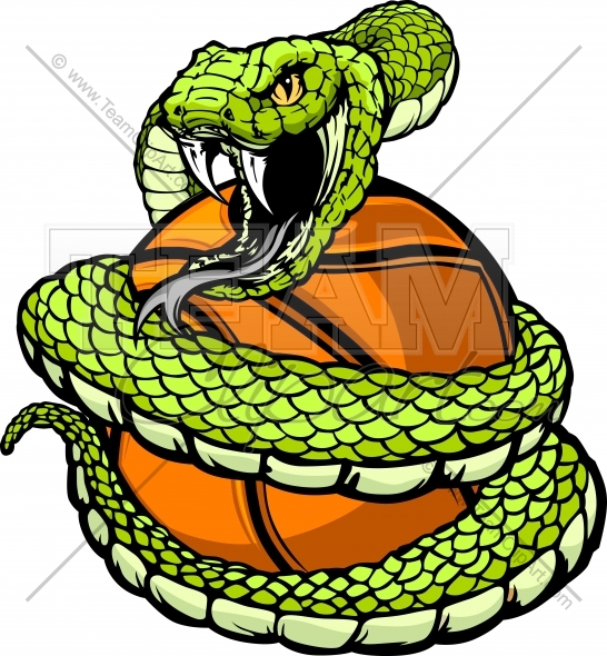 546x590 Anaconda Clipart Coiled Snake