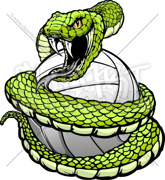 542x590 Viper Snake Clipart, Explore Pictures