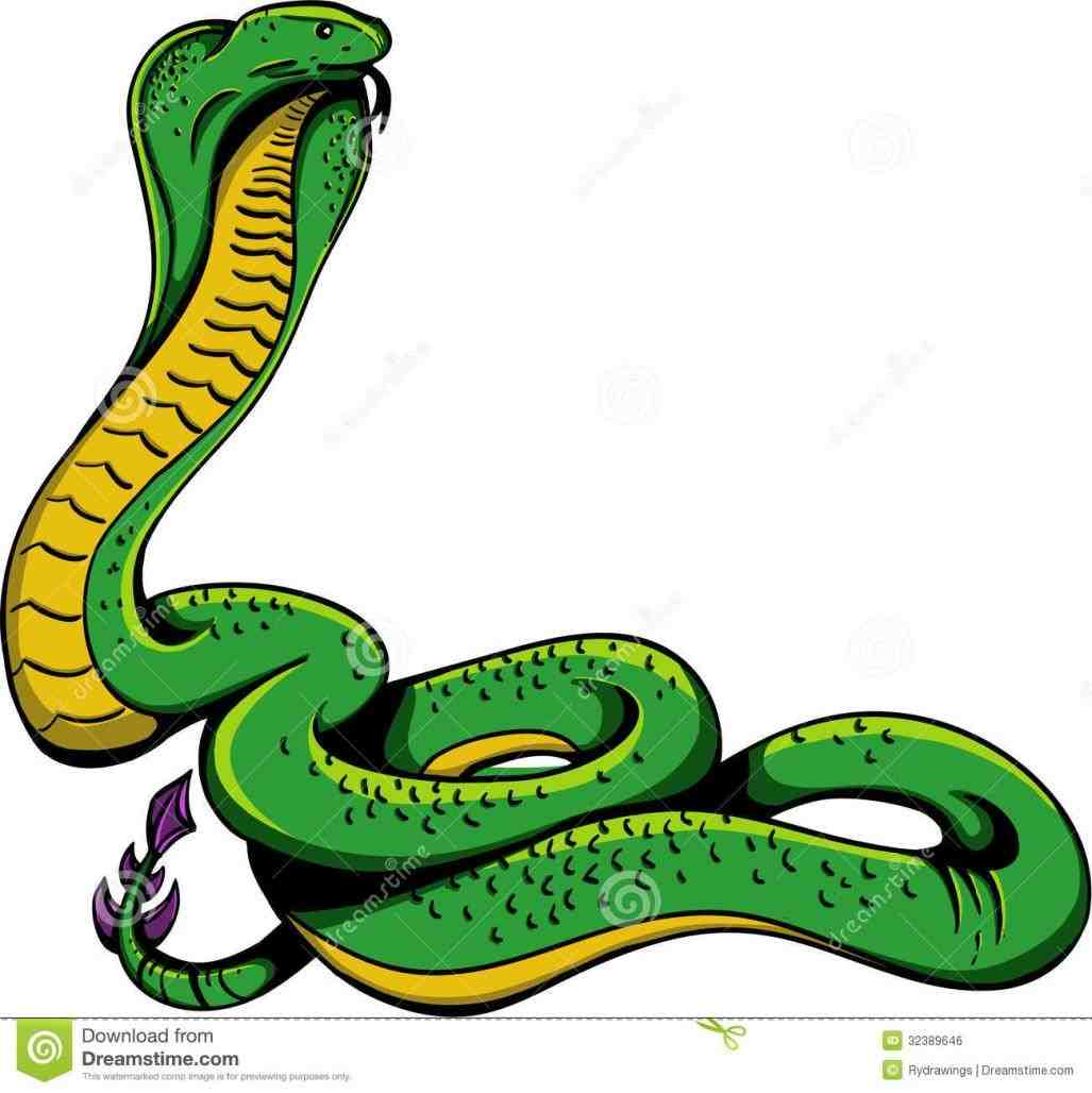 1027x1028 Striking Snake Clipart Snake Review
