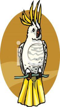 197x350 Clip Art Illustration Of A Cockatoo