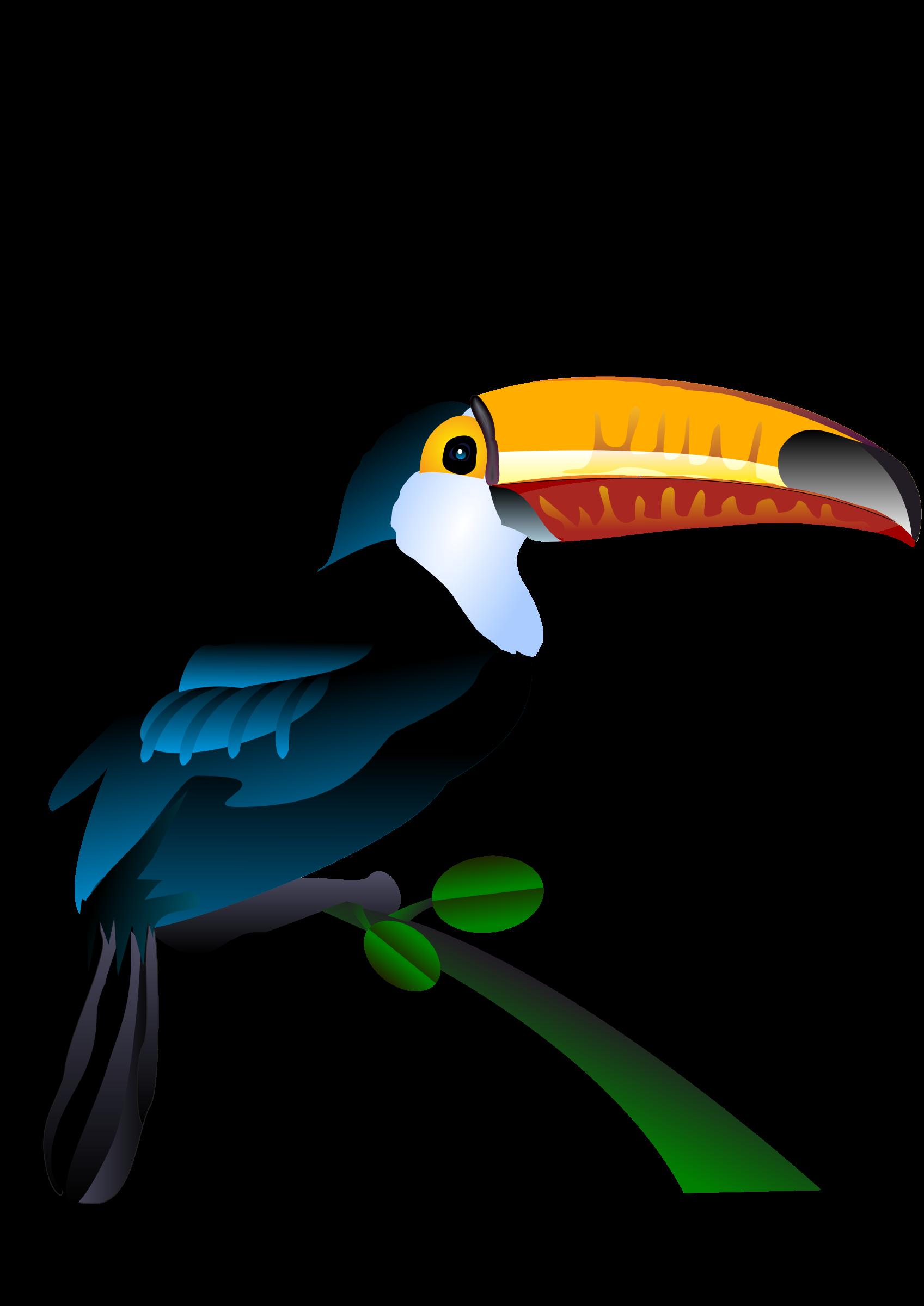 1697x2400 Toucan Vector Art Image