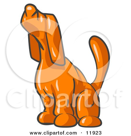 450x470 Scared Orange Tick Hound Dog Sniffing The Air Clipart Illustration