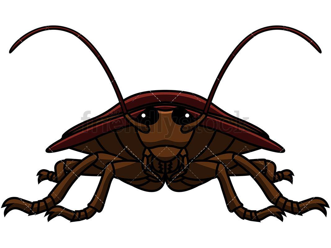 1067x800 Front View Cockroach Cartoon Vector Clipart Roaches, Vector