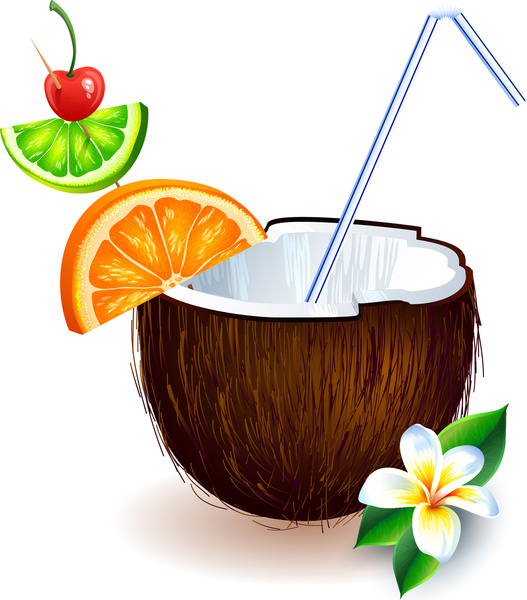 527x600 Drink Clipart Coconut Shell