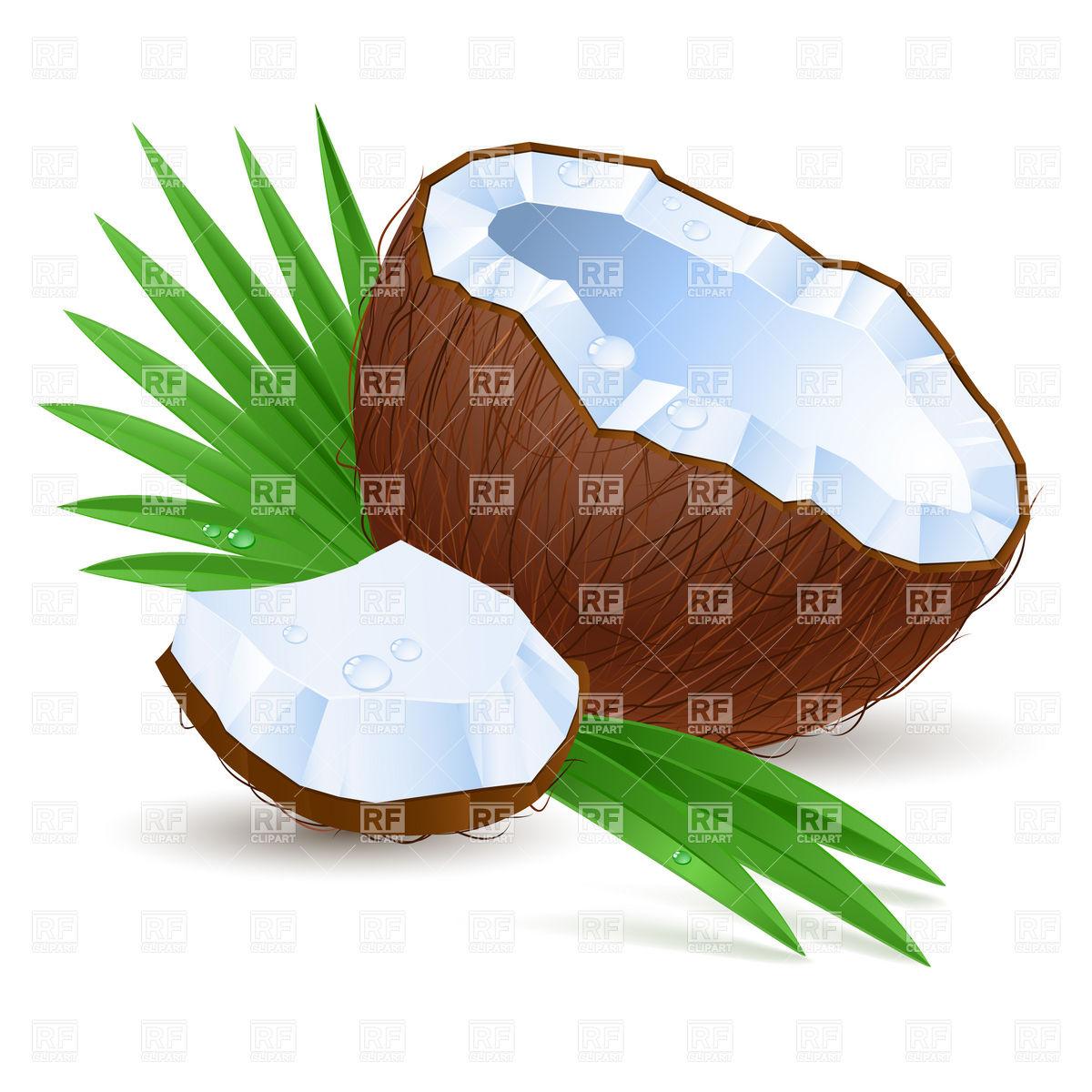 1200x1200 Broken Coconut Half With Milk Royalty Free Vector Clip Art Image