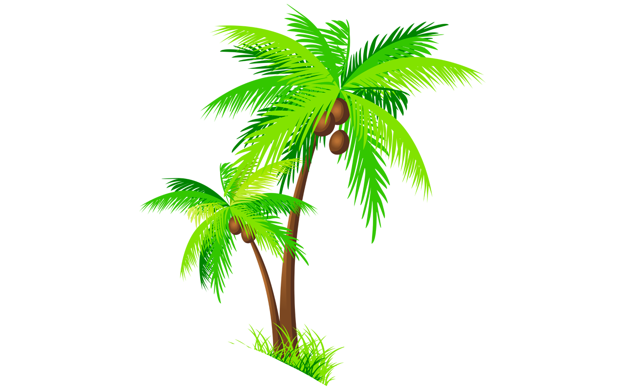 Coconut Tree Clipart