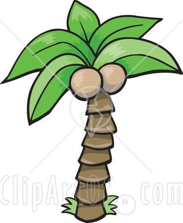 369x450 New Coconut Tree Clipart