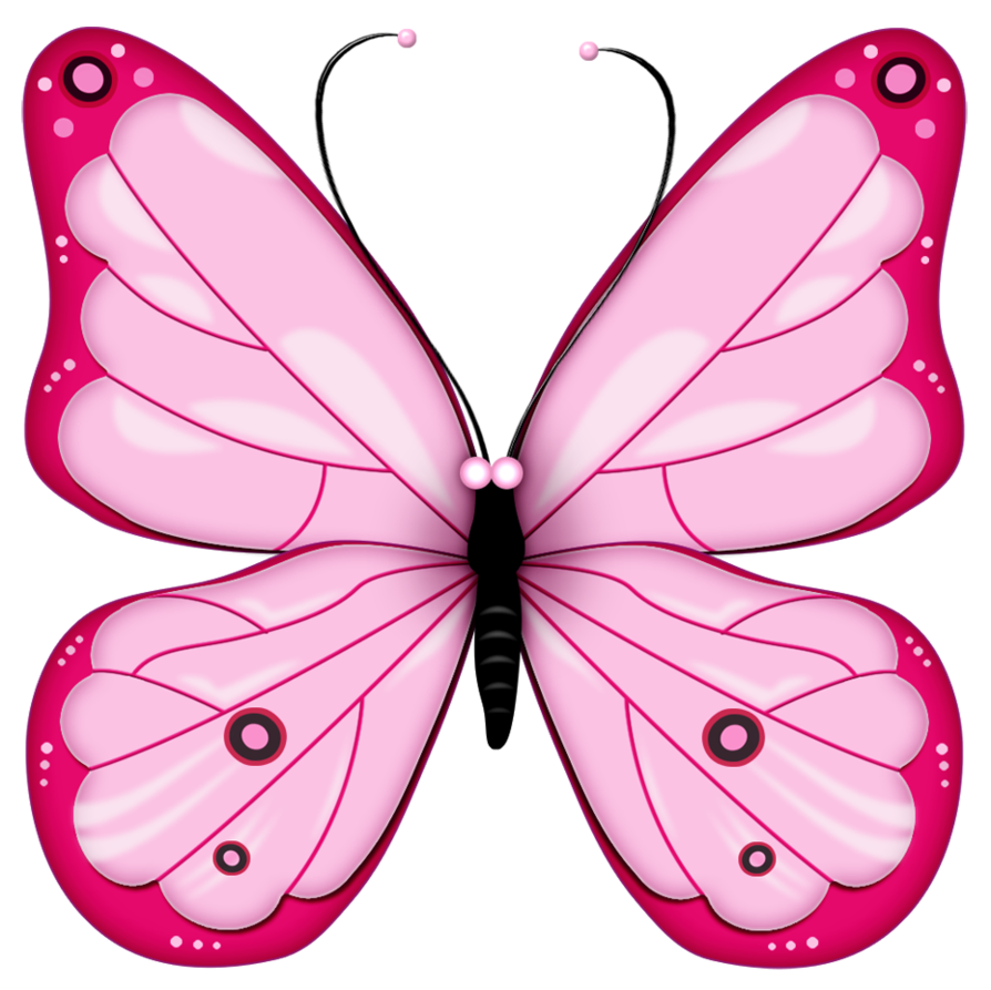 894x893 Butterfly One Clipart Amp Butterfly One Clip Art Images