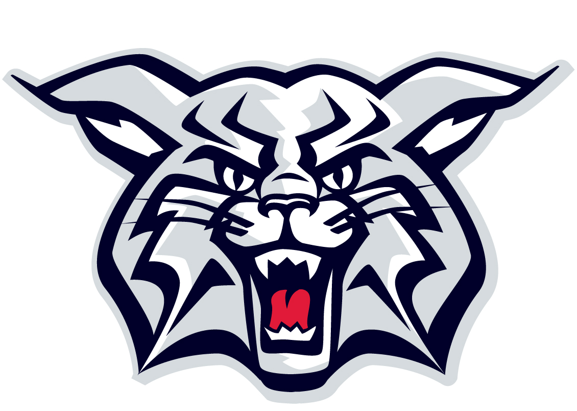 1130x804 Wildcat Clipart Arizona Wildcat