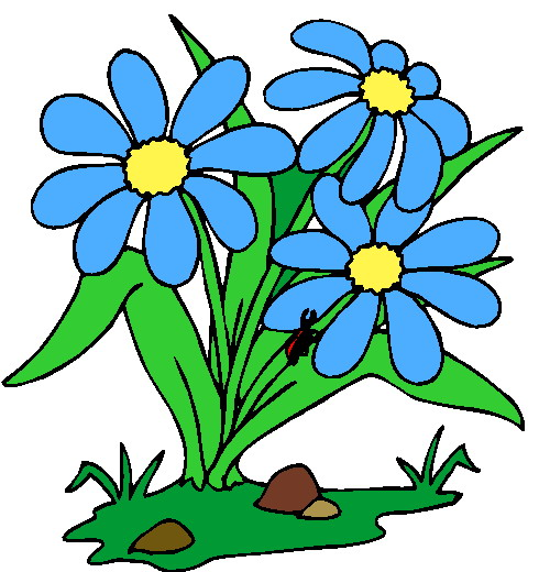 490x520 Elower Clipart Flower Plant Pencil And In Color Clip Art